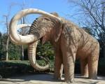 Eléphant du parc de la cité de Barcelone